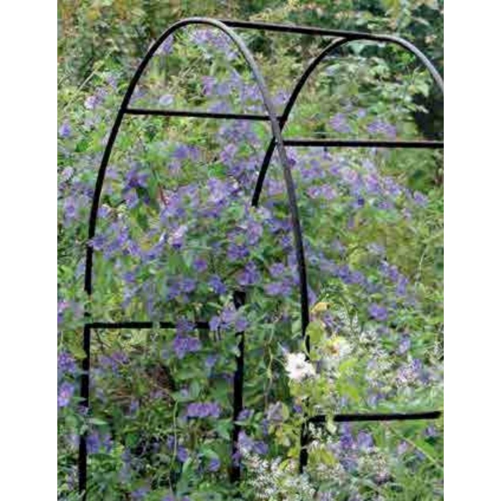 Arco trionfo in ferro x rampicanti 240x140x38 for Piante da giardino rampicanti