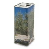 Lattina rettangolare per olio da 1 Lt con tappo- colore anonimo